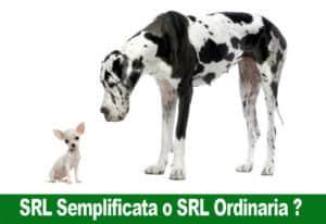 SRL Semplificata o SRL Ordinaria